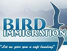 Bird Immigration