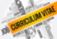 CV Review in NZ