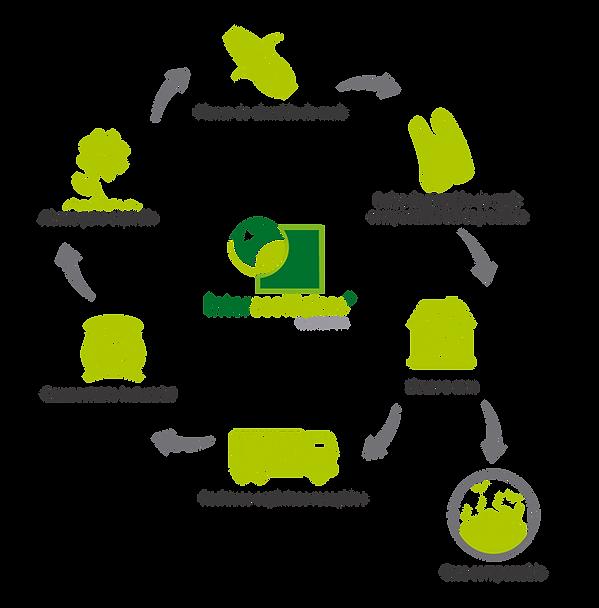 Ciclo Natural de bolsas plasticas biodegradables