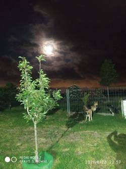 FINCA bei Nacht