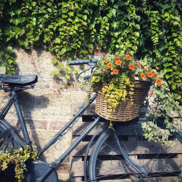Bike Outside.jpg