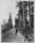 Road's_Built_by_VIFL1913.png
