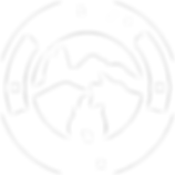 Norstar logo white.png