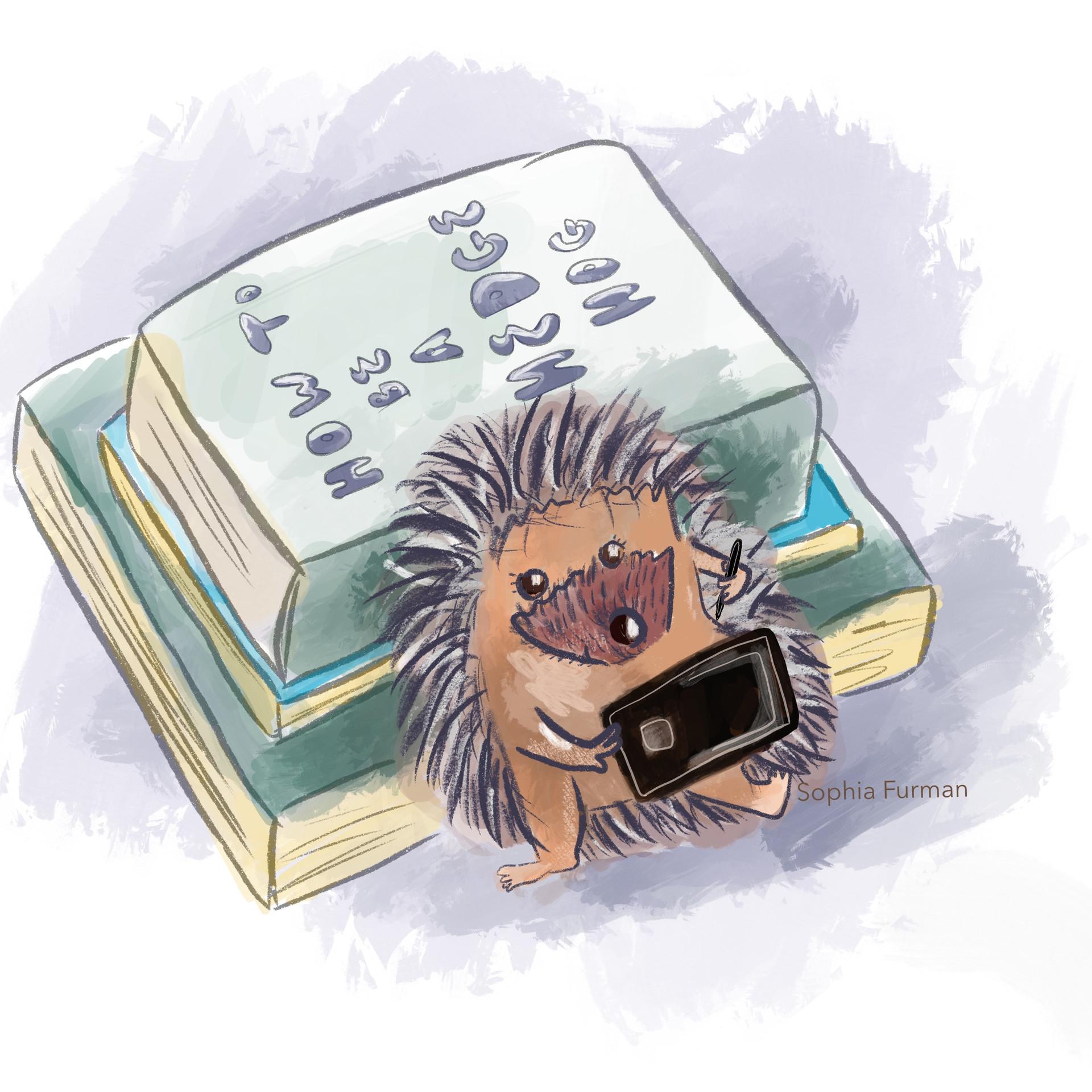 Hedgehog Reading