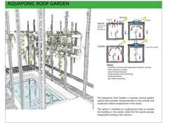 Product Profile: Rooftop Aquaponics