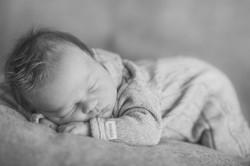 vauvakuvaus, perhekuvaus