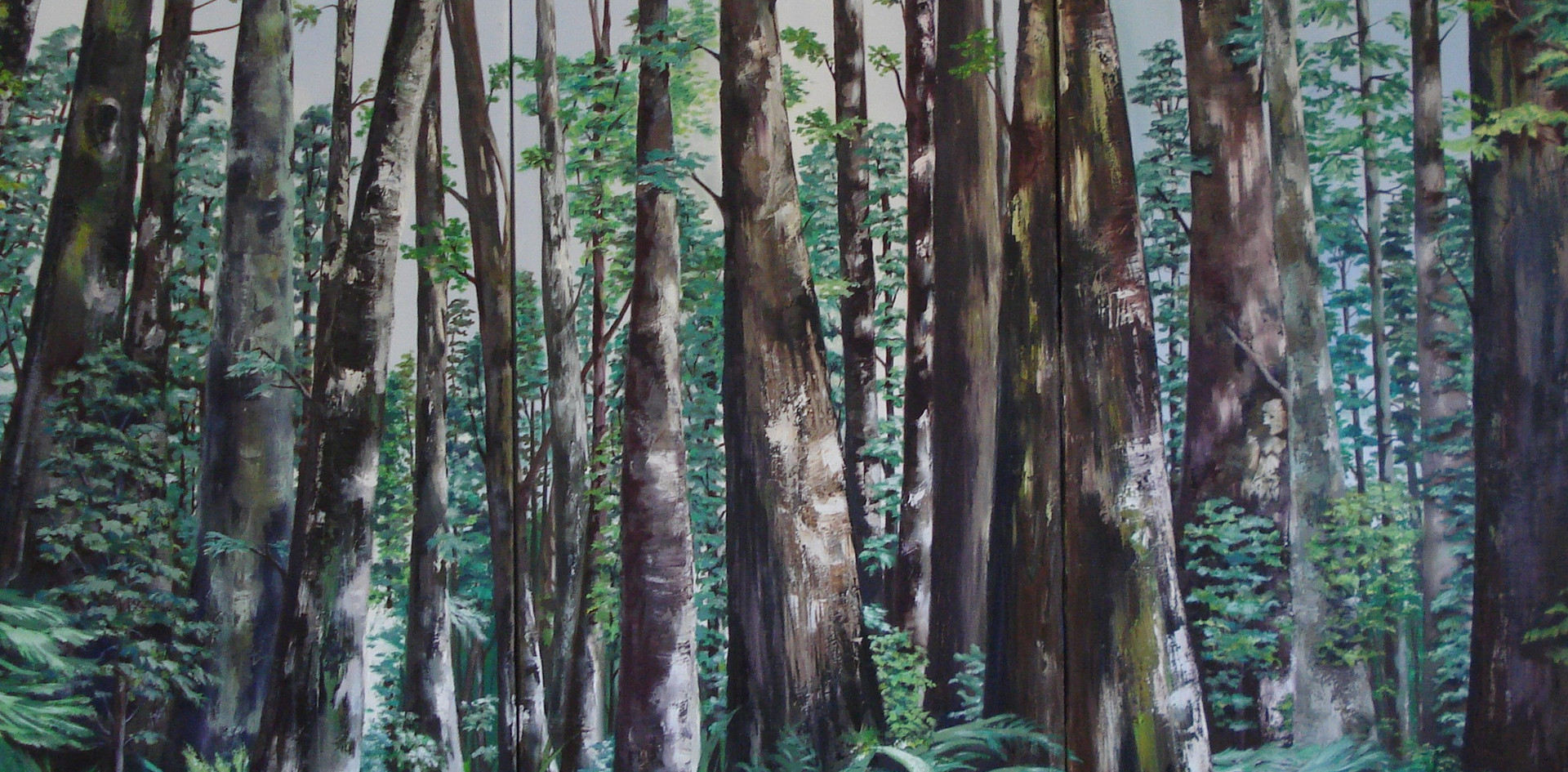 The Redwoods