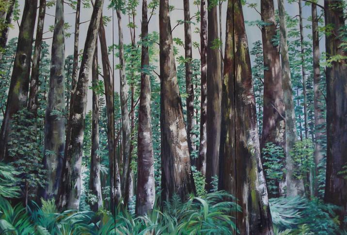 Redwoods triptych
