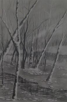 Graphite sketch clear creek.jpg