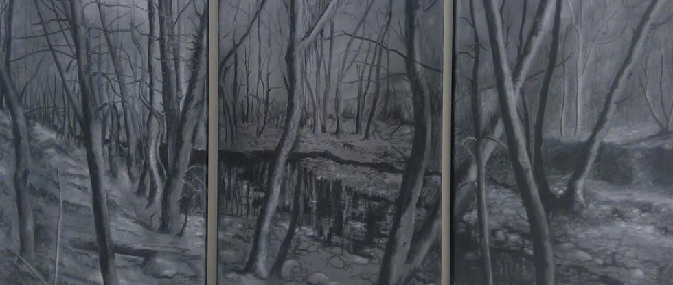 Creek Tryptich in Ash