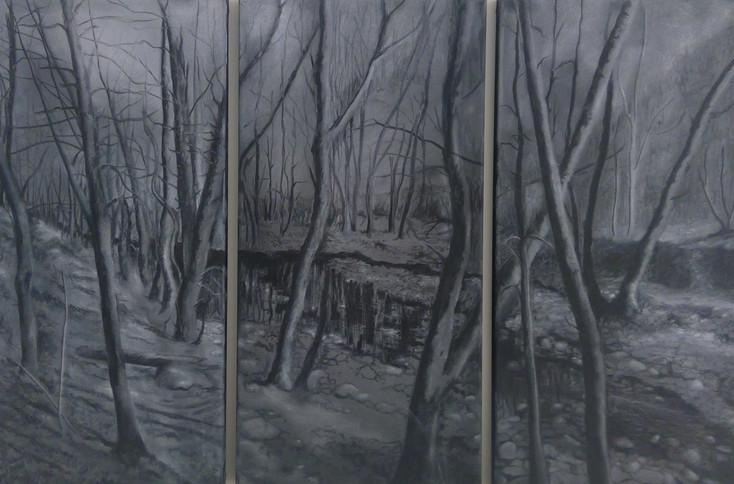 Triptych ash.jpg