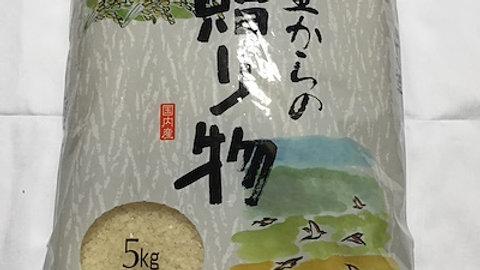 福岡県朝倉市産山付き新米5kg 日本一美味しいお米を目指しています