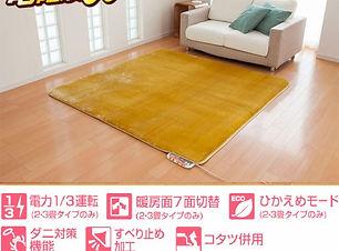 hotcarpet-4p-img.jpg