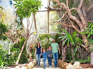 jungle park 1.jpg