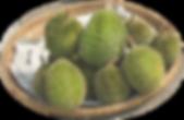 Durian Farm in Johor