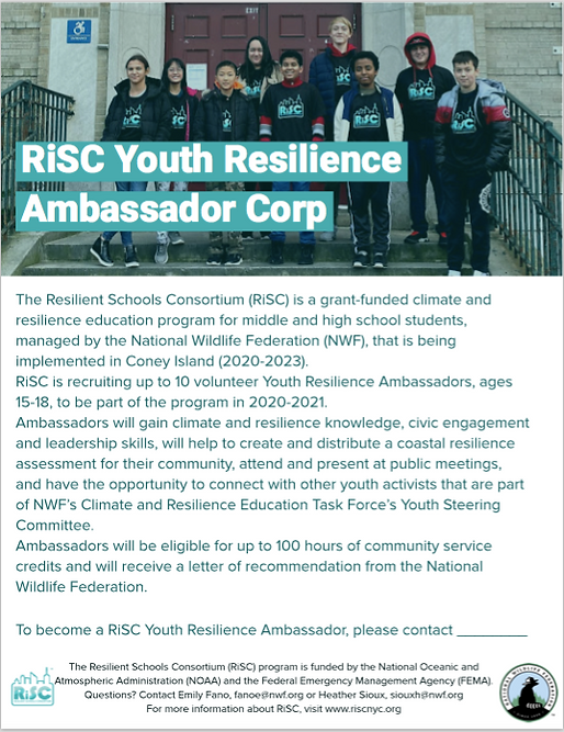 RiSC YRA Flyer for Social.png