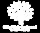 Brilliant Minds Logo AI File-03.png