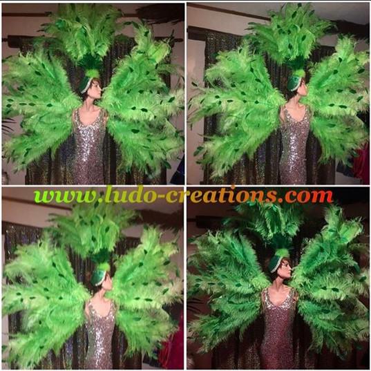 #ludogarnier #ludocreations #feathers #i