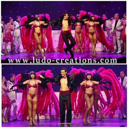 #ludogarnier #ludocreations #costume #co
