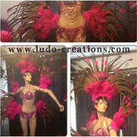 #ludogarnier #ludocreations #feathers #h