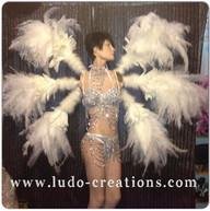 #ludogarnier #ludocreations #feathers #w