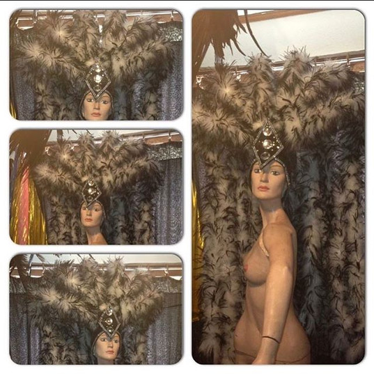 #ludogarnier #ludocreations #feathers #b