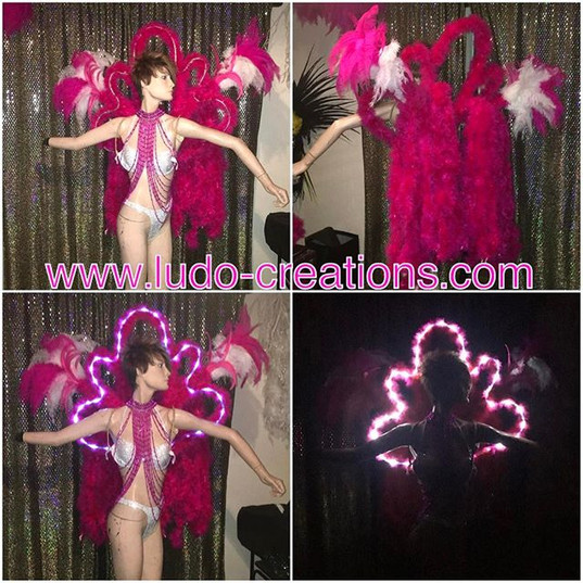 #ludogarnier #ludocreations #feathers #p