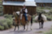 Pack Mules II (1 of 1).jpg