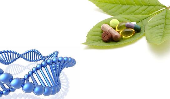 Naturopatia, Nutrición