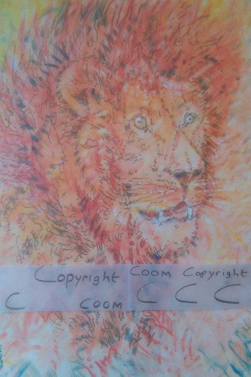Sekuru King Lion