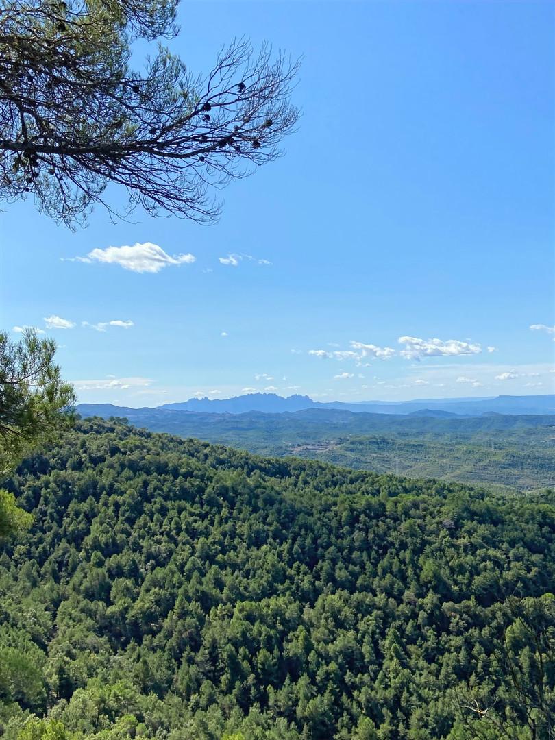 Montserrat des del Coll del Castellar
