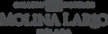 logo MolinaLario ciudad.png