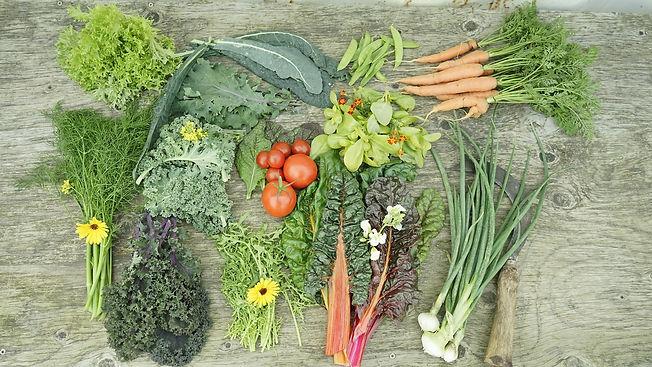 Grönsaker_september.jpg