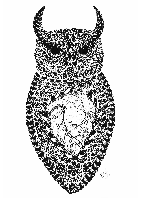 coruja protetora