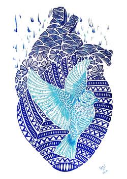 passaro azul