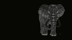 elefante_edited