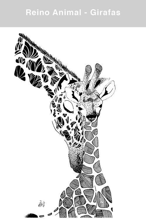 Pôster A3 - Reino Animal
