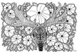 cervo cranio flores