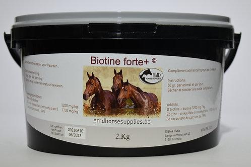 Biotine Forte 3200mg 2kg-4kg