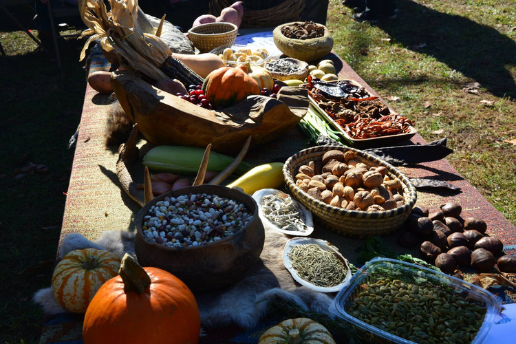 Array of native foods