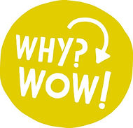 "At Curious Cubs we turn ""Why?"" into ""WOW!"""