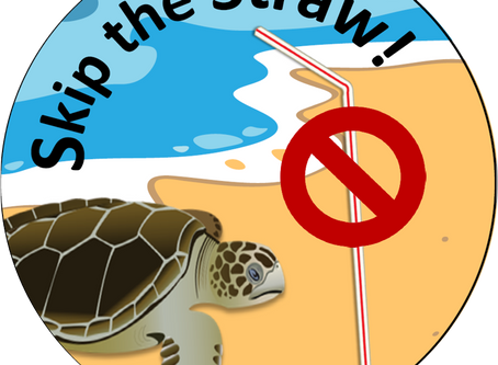 """Skip the Straw"" Campaign to raise awareness about Single-Use Plastics Pollution!"