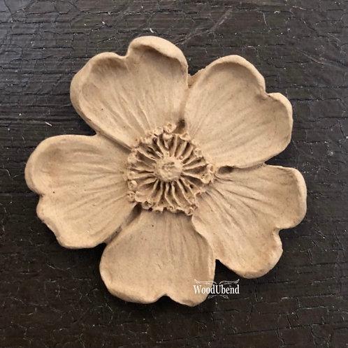 5 Petal Flower #1479