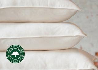 Whole Organic Pillow