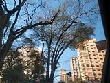 Captura_de_Tela_2020-10-15_às_11.24.13