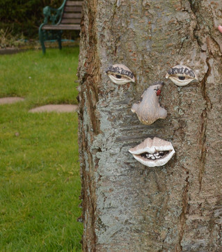 """""""Super Trees"""" and their incredible healing powers..."""