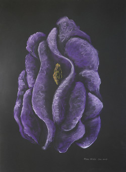 Purple Habitat