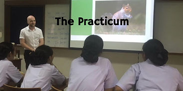 TEFL Observed Practice Teaching
