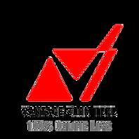 Vantage Zoom TEFL Logo (transparent).png