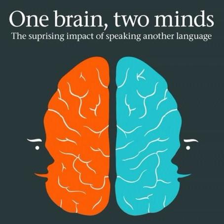Brainbuilding
